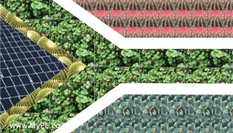 Giant SA flag will be visible from space