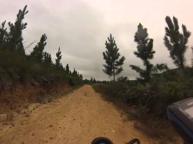 Mountainbiking in Longmore Forest - Port Elizabeth - South Africa