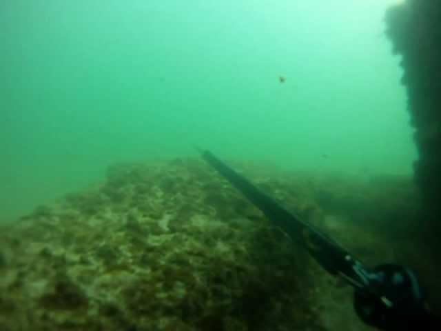 Spearfishing Cracker Six Pillars, Port Elizabeth