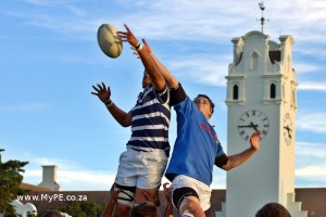 Grey vs Wynberg