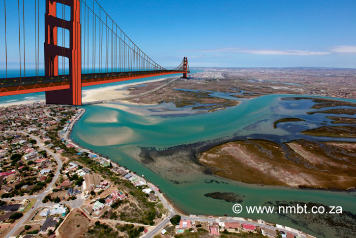 Swartkops River's Golden Gate Bridge