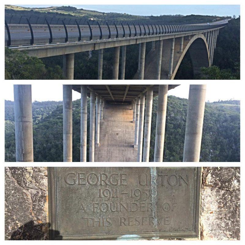 MyPE Image: Van Stadens Bridge
