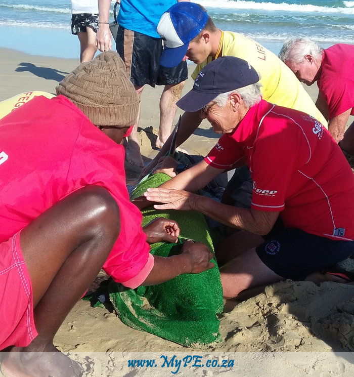 NSRI Injured Dolphin