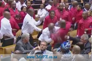 SONA EFF Brawl