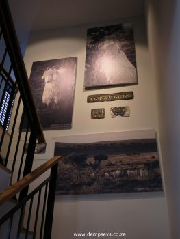 stairwell at mohair sa hq