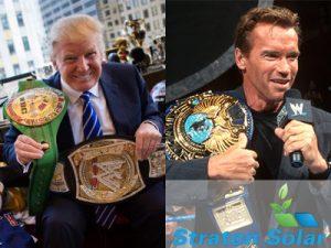 Donald vs Arnold