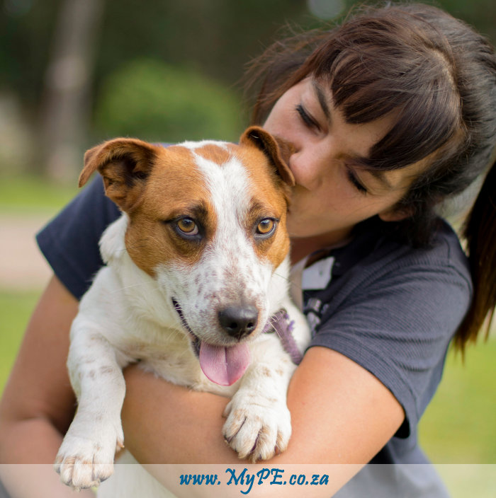 Animal Welfare Society Port Elizabeth
