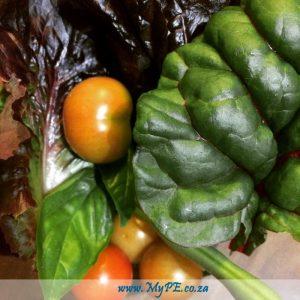AWS Garden Salad