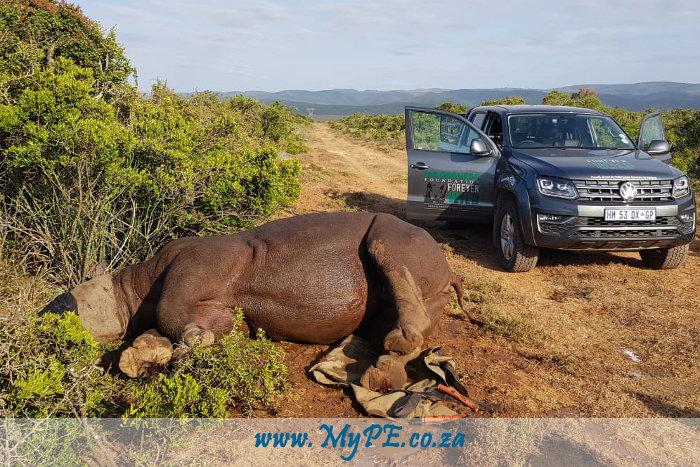 Fight Against Rhino Poaching