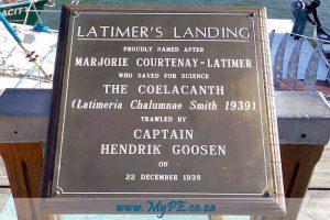 Coelacanth Latimers Landing