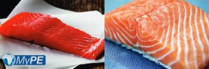 Wild vs Farmed Salmon