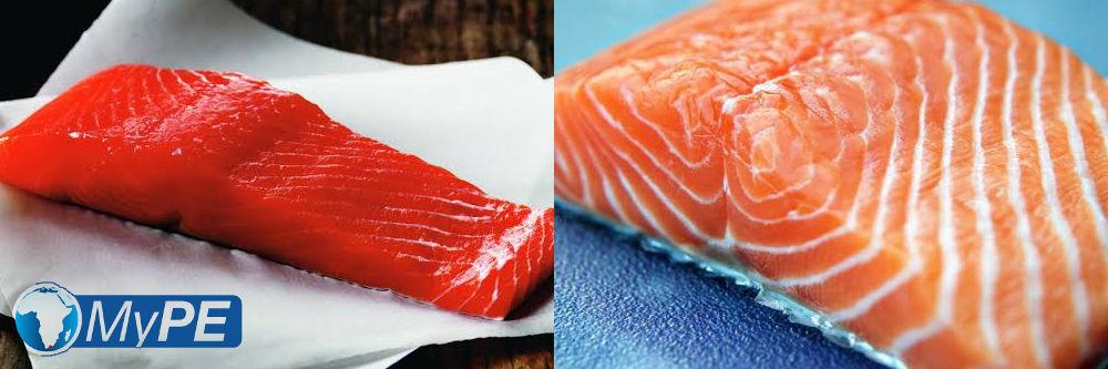 Wild vs Farmed Salmon
