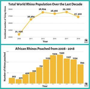 World Rhino Population
